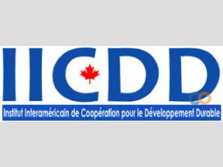 Recrutement au nouveau programme PIPJ au IICDD CANADA